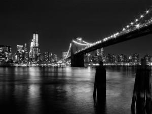 Bridge NYC