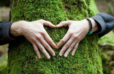 Rota sustentável: Como diminuir sua pegada de carbono nas viagens? 7