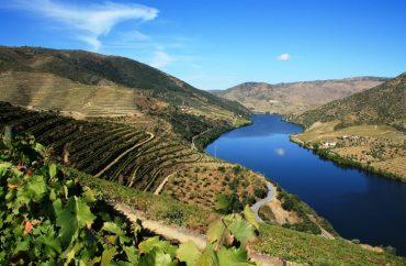 """Meetings from Douro"" divulga o Douro e Trás-os-Montes para o mundo 2"
