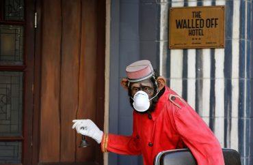Hotel coloca máscara contra coronavírus em estátua de macaco 2
