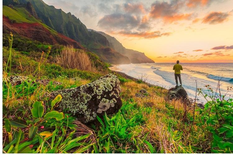 Mudar para o Havaí