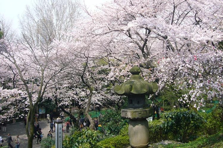 curiosidades da capital japonesa