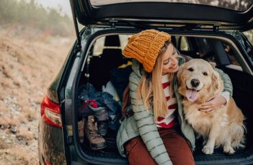 Viagem com pets