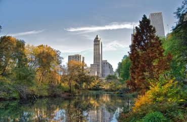 Turismo de NY faz parceria inédita com The Climate Group 4